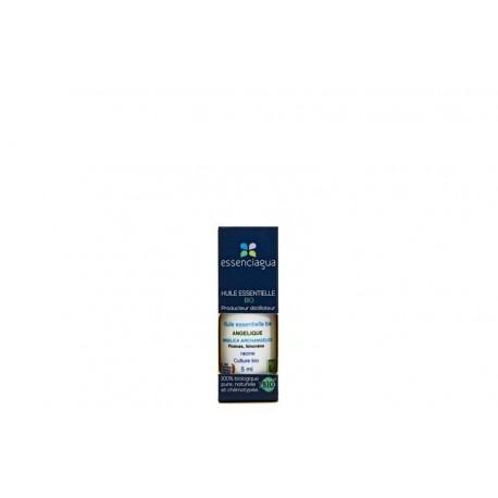 huile essentielle angélique botaniquement définie - Essenciagua